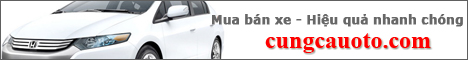 Cung cầu ô tô